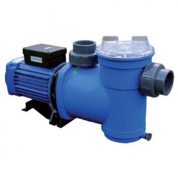ITT Argonaut 0.75HP (0.56kW) Single Phase Filtration Pump AV100-2DNS